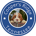 Coopers Ridge - Mini Australian Labradoodle Breeder Tennessee